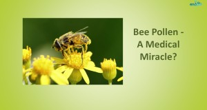 Bee-Pollen-A-Medical-Miracle-Health-Benefits-of-Bee-Pollen